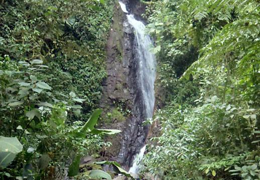 buena-vista-miravalles-waterfall-518